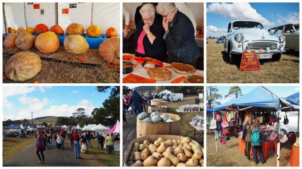 Collector Pumpkin Festival 2016 by Five Beans Food