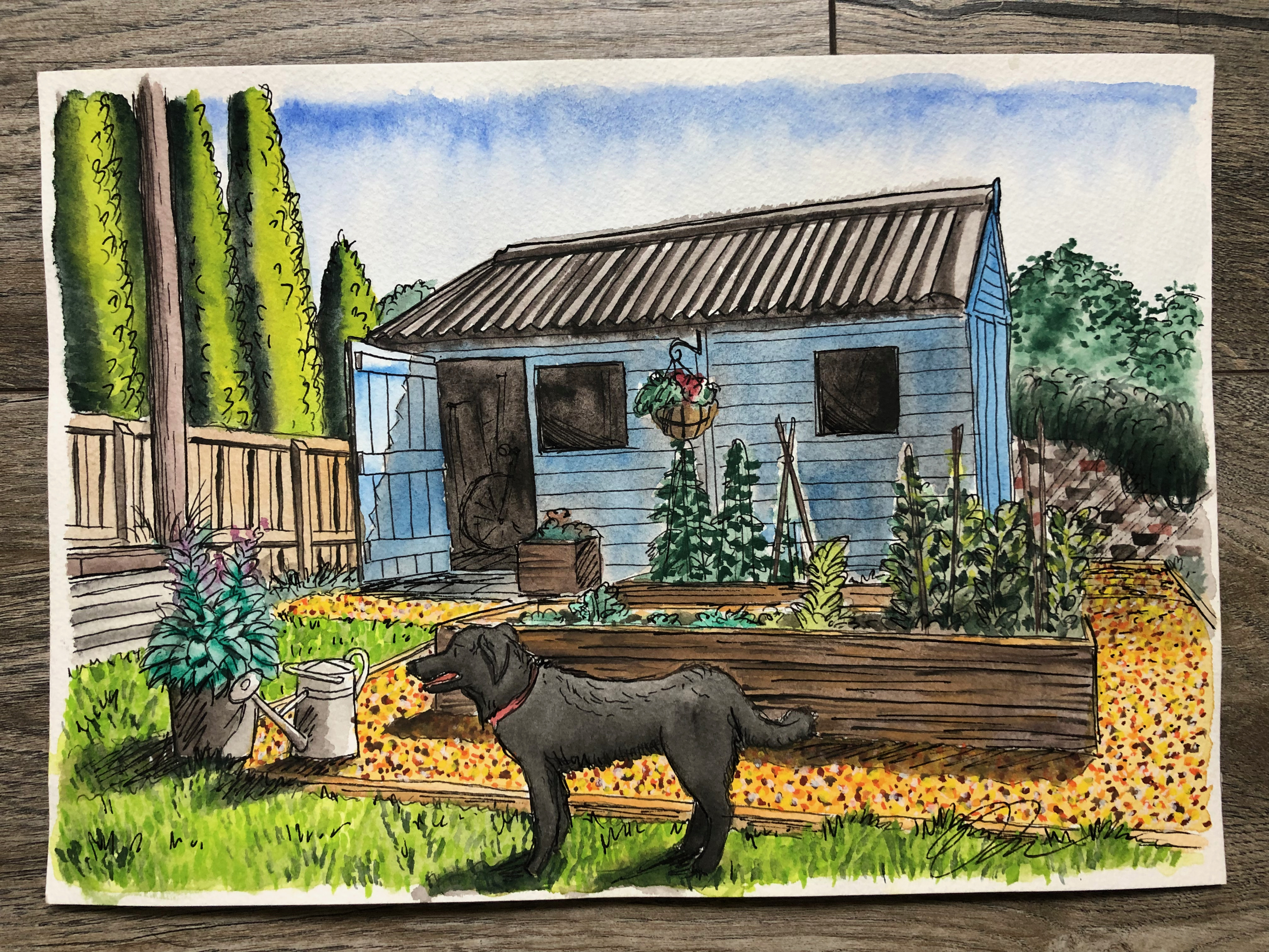 Painting of garden shed and dog.