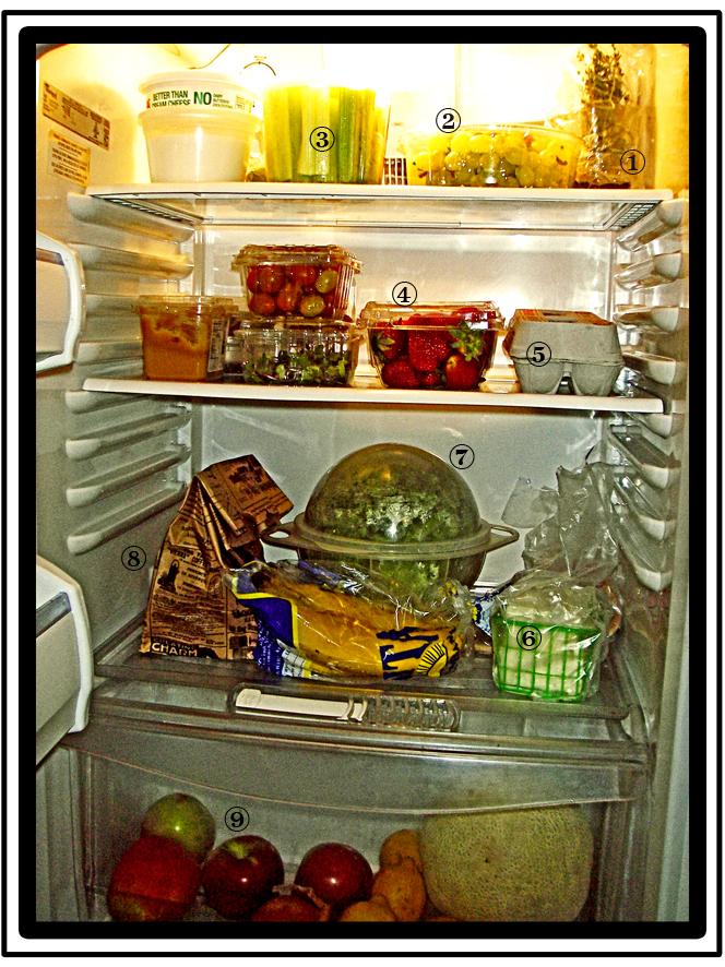 veggie-fridge_sm