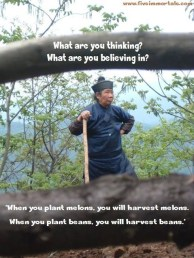 li shifu saying