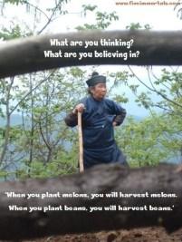 li shifu saying