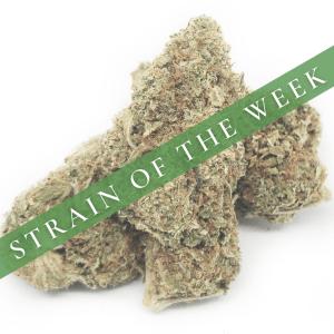 Strain of the Week