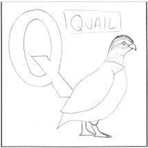 q-is-for-quail