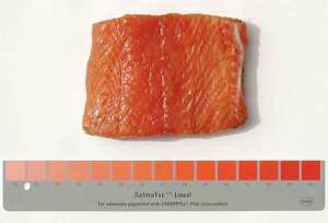 50 Shades of Pink; Farmed Salmon Is Dyed From Gray To Pink