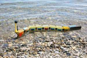 This amazing robot swims like an eel AND detects pollution