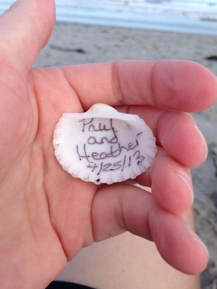 Found At Cocoa Beach, Florida