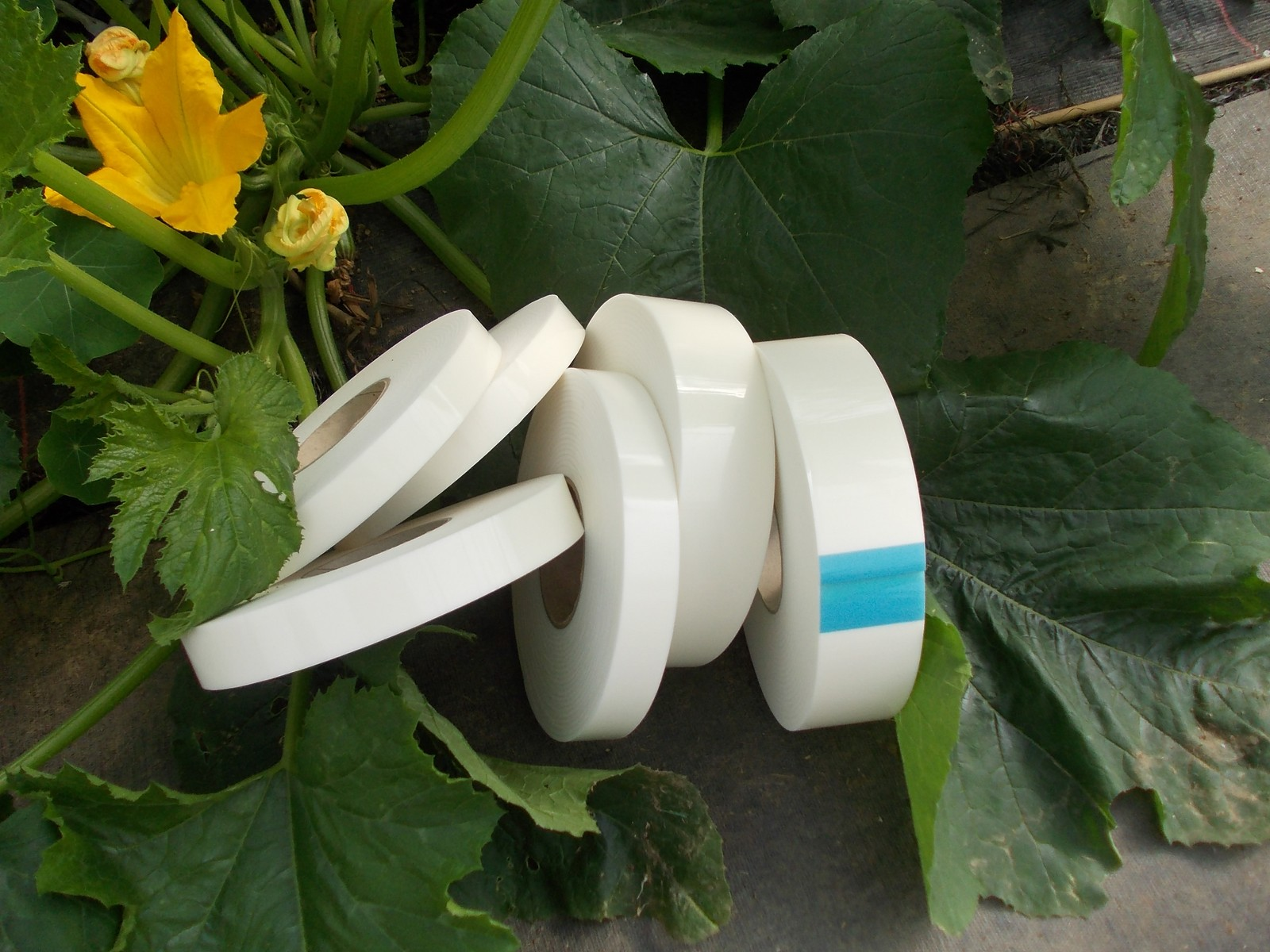 Polytunnel Tape Products Instructions Five Star Polytunnels