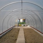 inside a newly assembled with crop bars five star polytunnel
