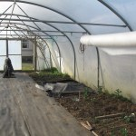 White fleece on eight metre roll in stock five star polytunnels
