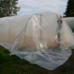 superthermic polythene