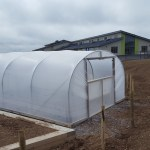 Five star polytunnels north wales school