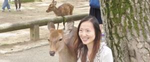 Nara-Japan-deer