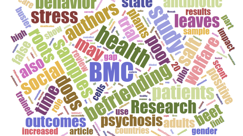 Highlights of the BMC Series – February 2021