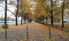 Walking to Karl-Marx-Allee