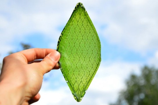 "Synthetic ""Leaf"" That Produces Oxygen"
