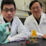 Sugar battery offers green-powered tools