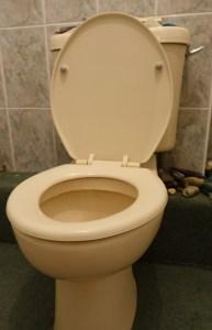 Toilet, Loo, toilet bowl
