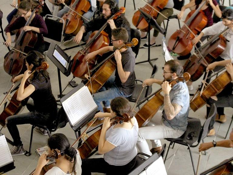 Jóvenes violoncellistas conforman un ensamble durante el FIV León