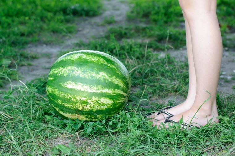 vattenmelon-11-jpg.jpg