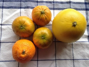 A quintuple of citrus