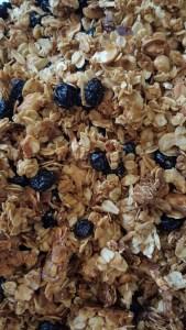 granolablueberry