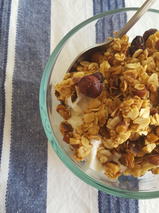 mixed berry dried fruit granola 2