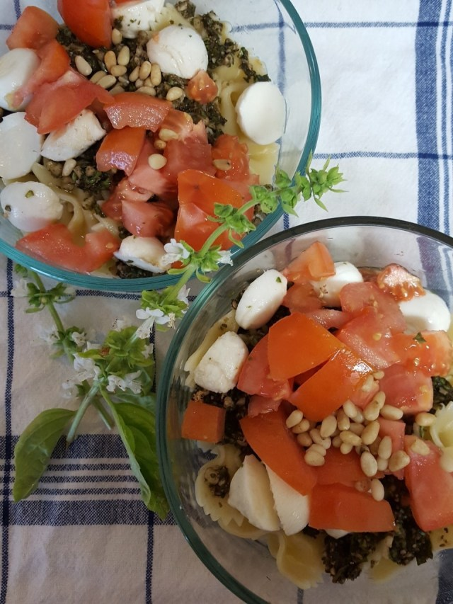 pesto tomato mozzarella pasta salad