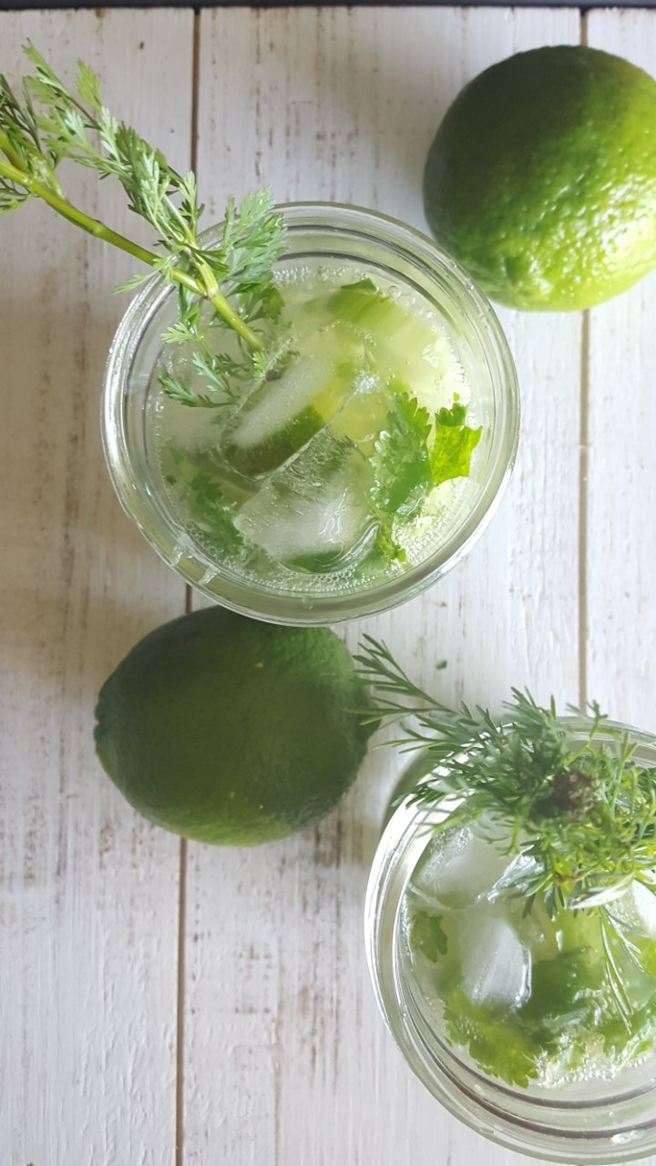 cilantro cucumber mojito