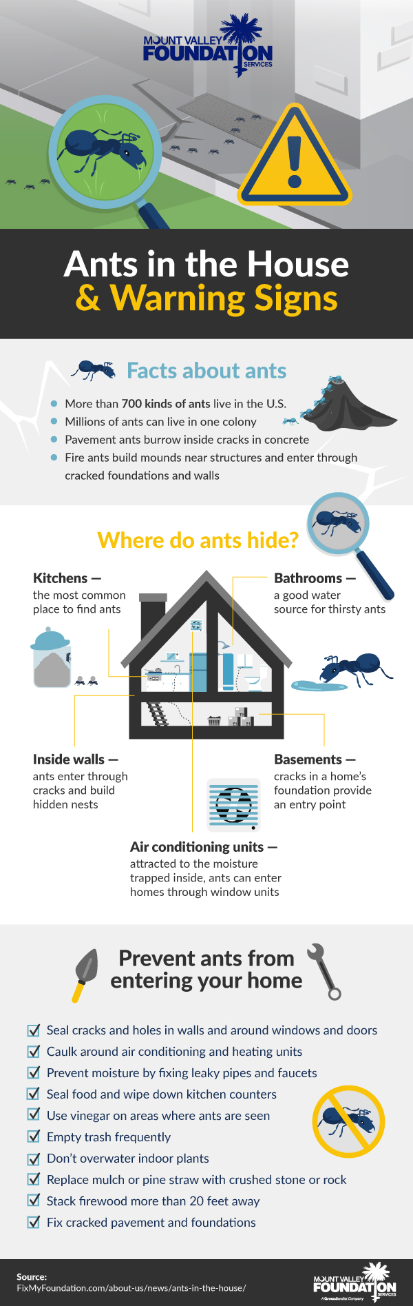 Ants in the House & Warning Signs
