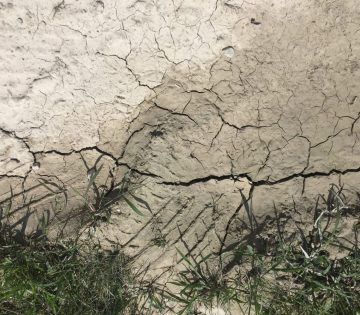 Dry soil and foundation problems