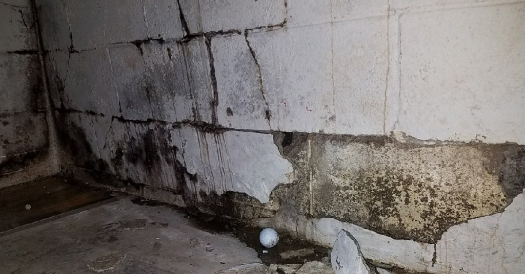 cracks and mold in walls