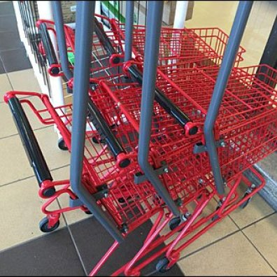 Customer in Training Shopping Cart 1