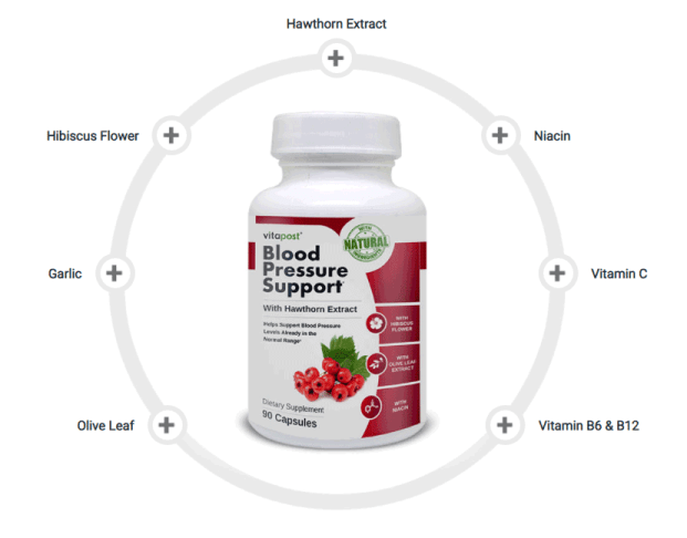 Blood Pressure Support Ingredients