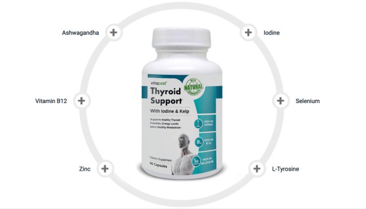 Thyroid Support Ingredients
