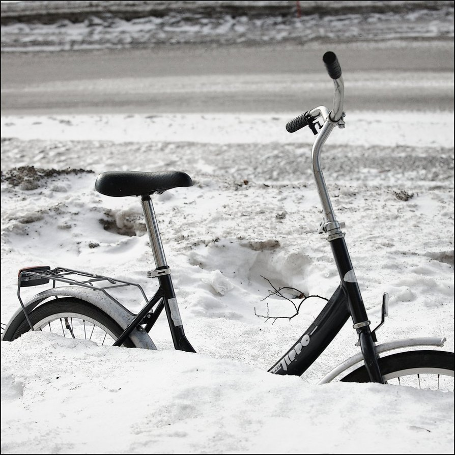 winter ice photography (39)