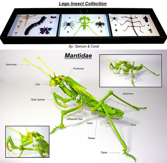 Lego Insects Collection