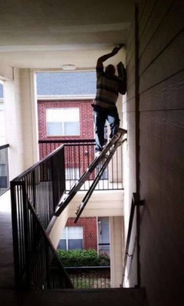 Pictures that redefine stupidity