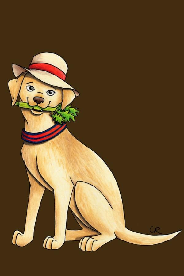 Doctors Meet Dogs Art Series