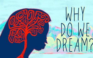 Neden Rüya Görürüz ?