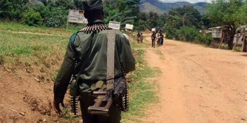 RDC : 2 éléments Mai-mai viennent d'être arrêtés par les services de sécurités