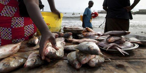 Goma-RDC : Interdiction d'importation des poissons frais venant du Rwanda, Les commerçantes lance un cris d'alarme aux autorités