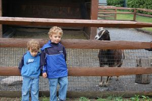 children-at-zoo-goat