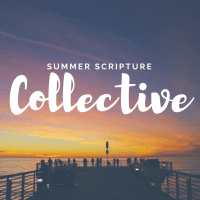 Summer Scripture Collective