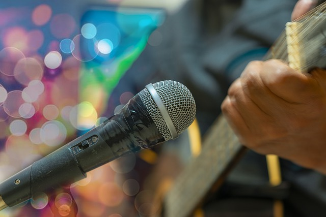 Microphone and guitarist