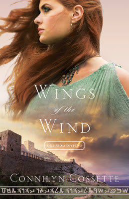 BOOK REVIEW: Wings of the Wind by Connilyn Cossette