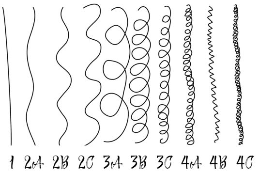 type de cheveux classification