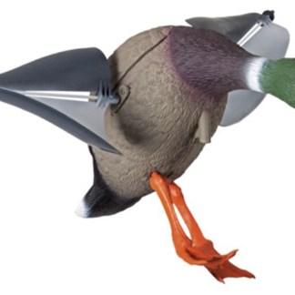 Lokkefugl Stokkand
