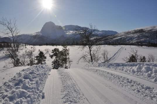 """Ski tracks on """"Påskehågen"""""""
