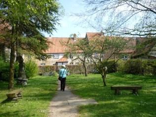 im Bibelgarten