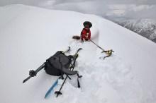 An ice-axe has multiple purposes